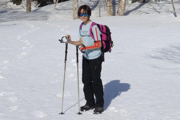 ストックは登り・下りで長さを変えて、体重をかければ楽に登山ができる